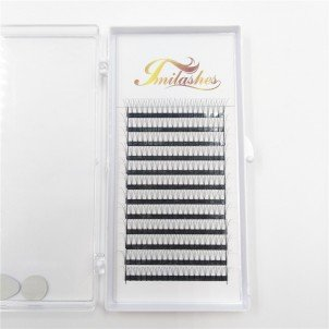 3D 0.10 C Pre Made fan Lashes  Wholesale- V