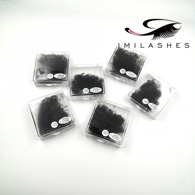 10D 0.07 500 Fans Loose Premade Lashes Wholesale - V