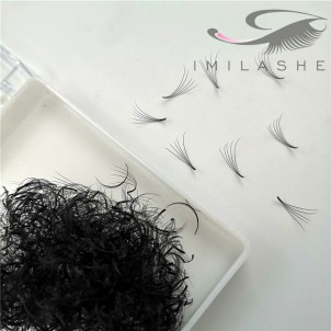 500 Fans  5D 0.07 Loose Fan Lash Extensions Wholesale - V