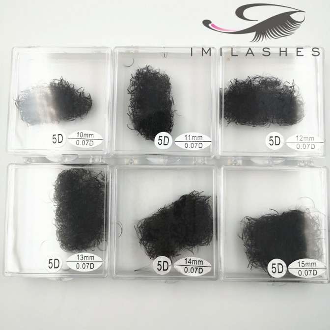500 Fans  5D 0.07 Loose Premade Fan Eyelash Extensions Supplier - V
